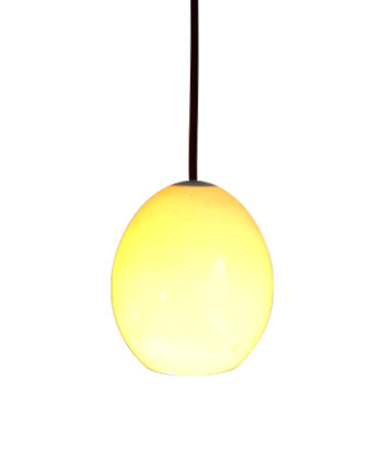 lámpara colgante huevo de avestruz empotrar lámpara colgante huevo de avestruz superficie web
