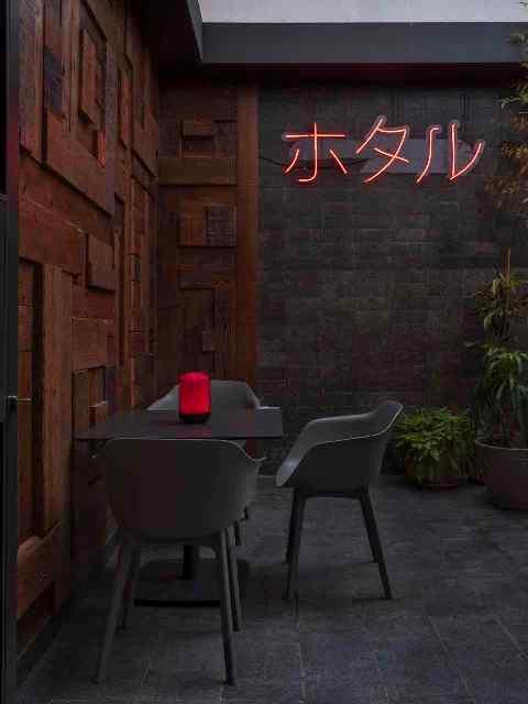 neon kanji ambiente